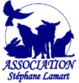 Association-Stephane-Lamart